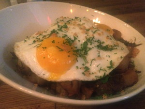 The chester short rib hash