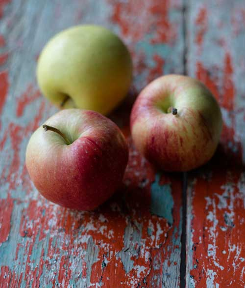 apples healthy eating services page - Services